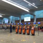 Пассажиропоток крупнейшего аэропорта России сократился в 2,5 раза в 2020 году